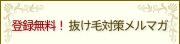 登録無料! 抜け毛対策メールマガジン